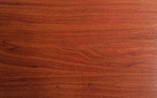 Sàn gỗ Bergeim BG19, ván sàn, sàn gỗ
